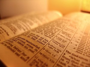 cool-bible-facts61